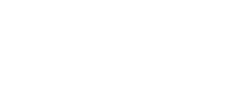 Streetbird on the Beach